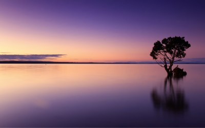 Calm Sunset 4K Wallpapers   HD Wallpapers   ID #21163