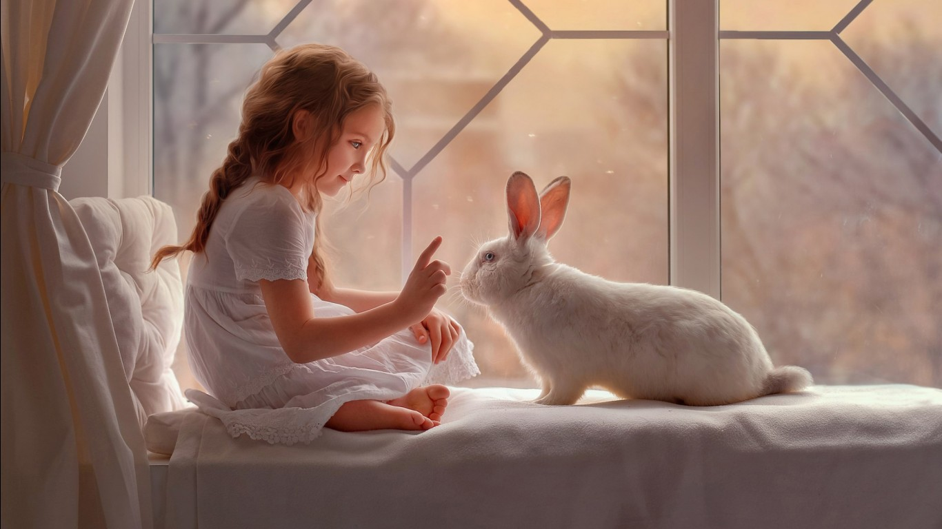 Girl 3 Monitor Wallpaper Cute Girl And Rabbit Wallpapers Hd Wallpapers Id 26613