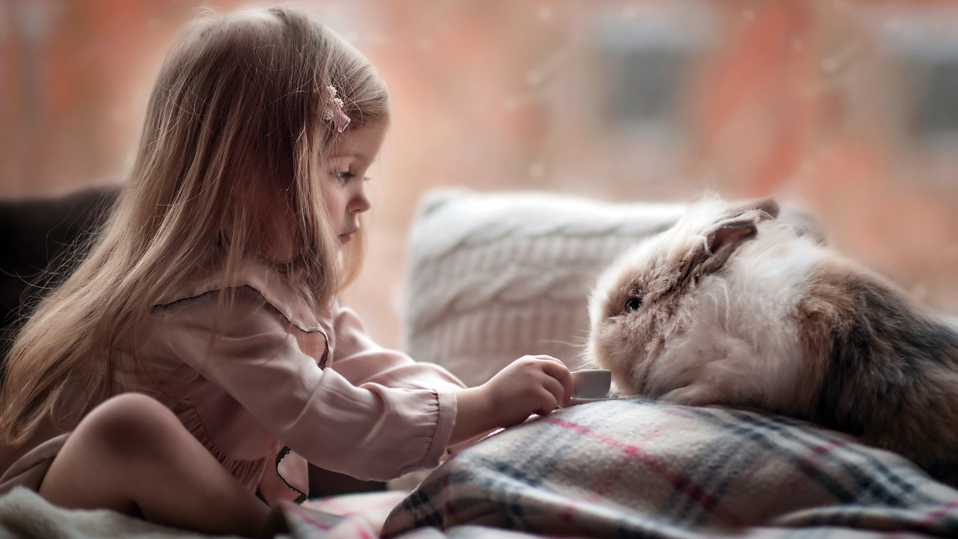 Latest Cute Baby Wallpaper Cute Girl Playing With Rabbit Wallpapers Hd Wallpapers