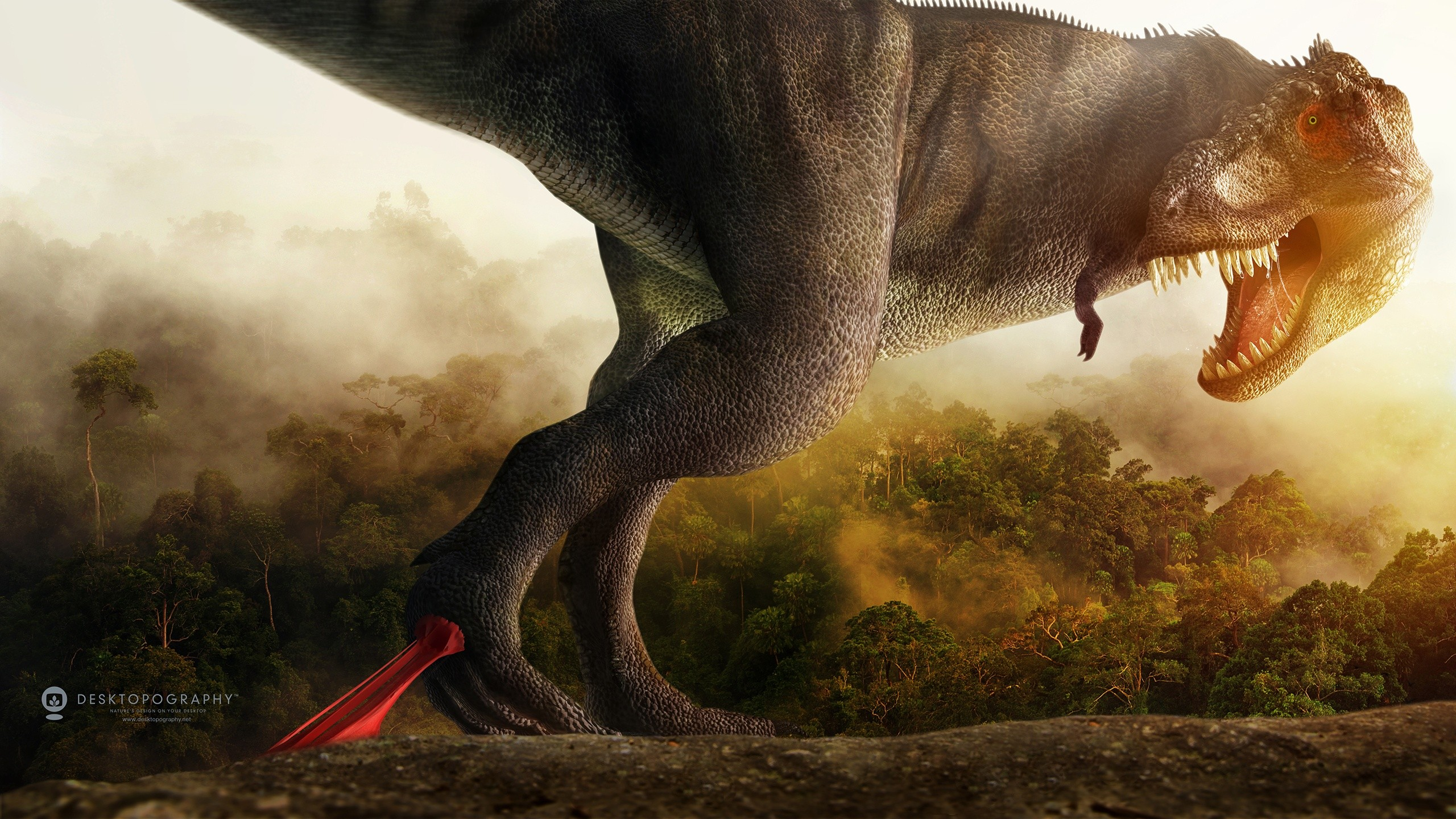 Iphone 5 Space Wallpaper Hd Dino Squelch Wallpapers Hd Wallpapers Id 13999