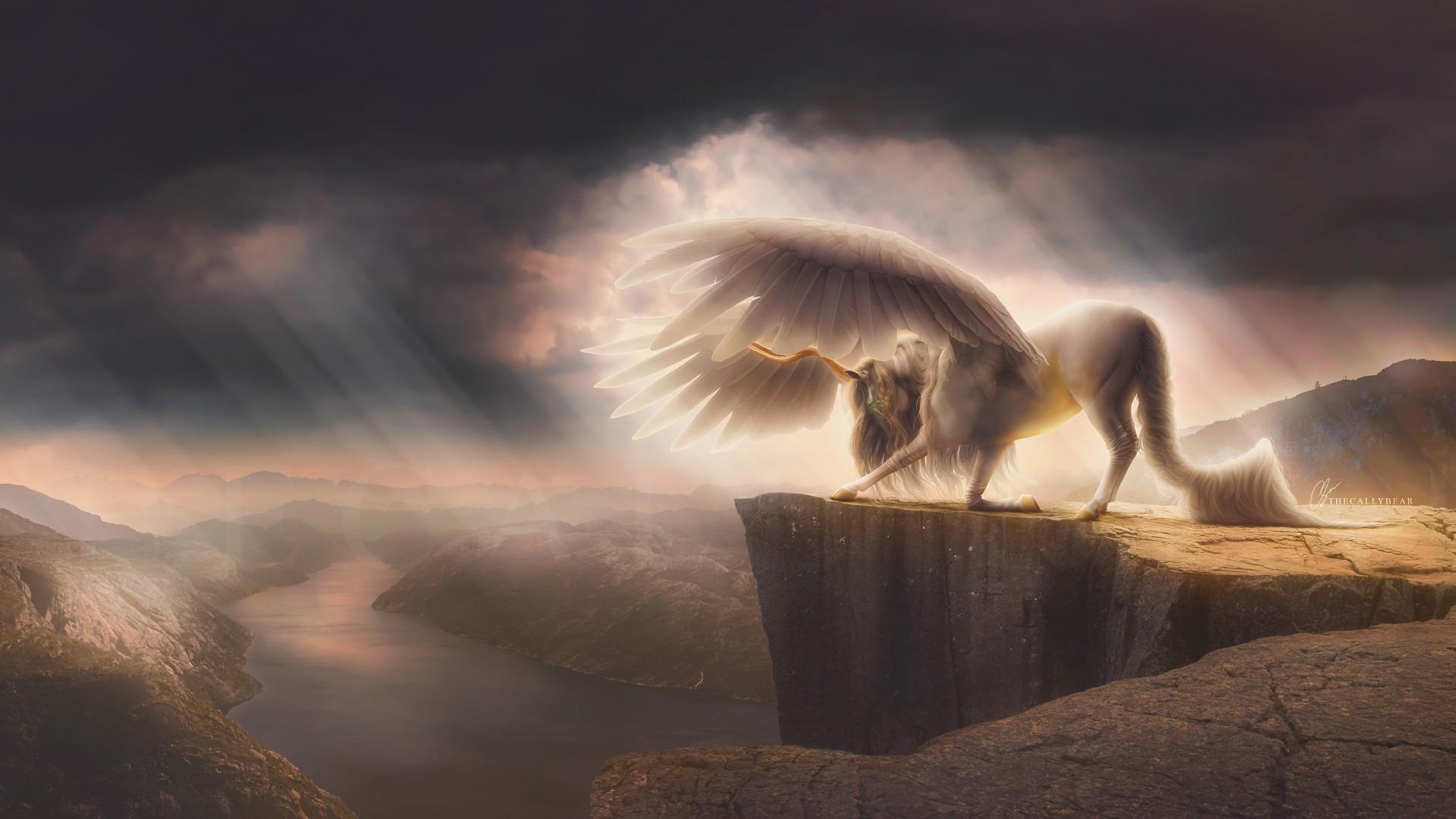 Dmt Wallpaper Hd Fantasy Pegasus Horse 4k Wallpapers Hd Wallpapers Id