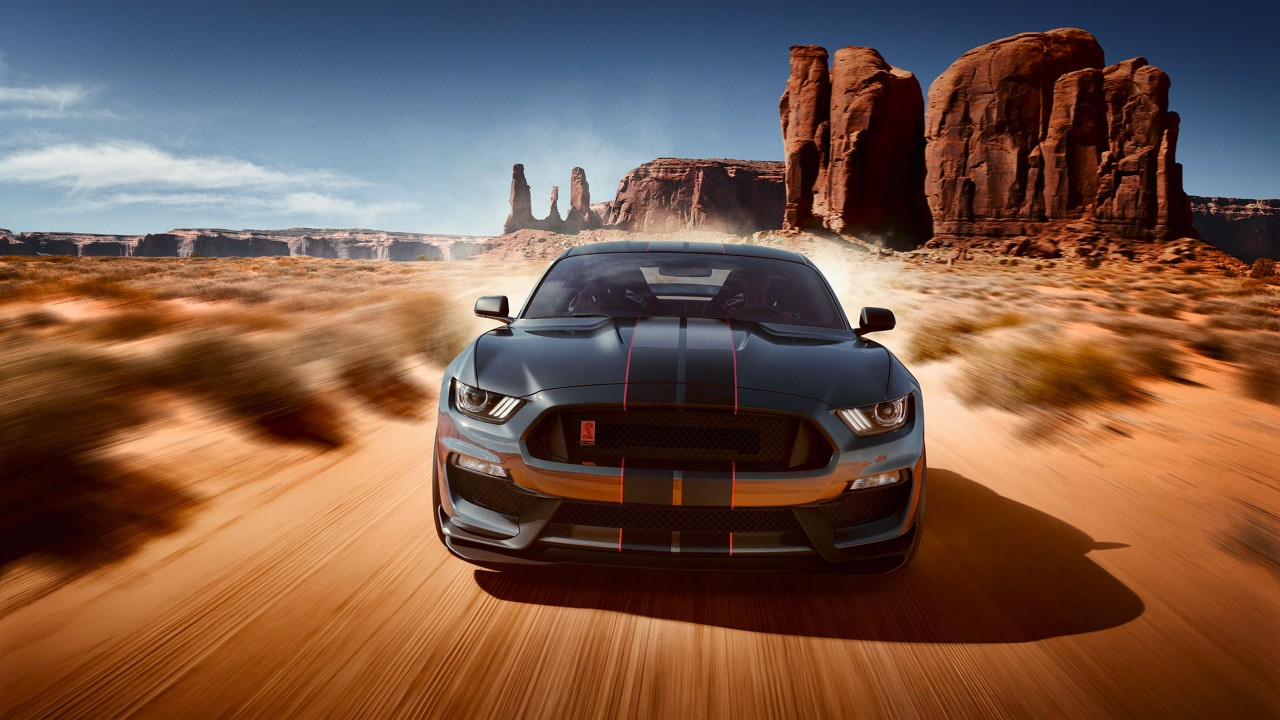 Girl Wallpaper Beach Ford Mustang Shelby Gt350 Wallpapers Hd Wallpapers Id