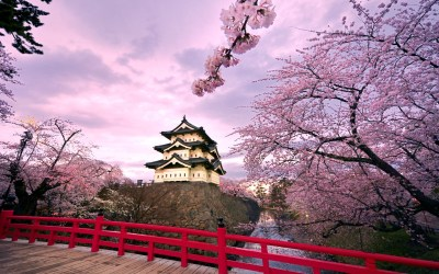 Hirosaki Castle Japan Wallpapers | HD Wallpapers | ID #10454