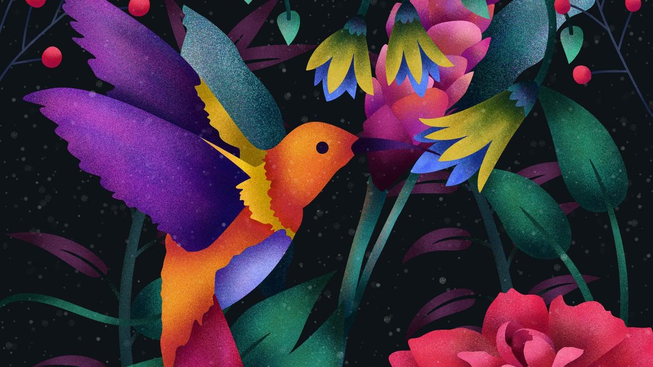 Hd 3d Wallpapers For Windows 8 Hummingbird Digital Art 4k Wallpapers Hd Wallpapers Id