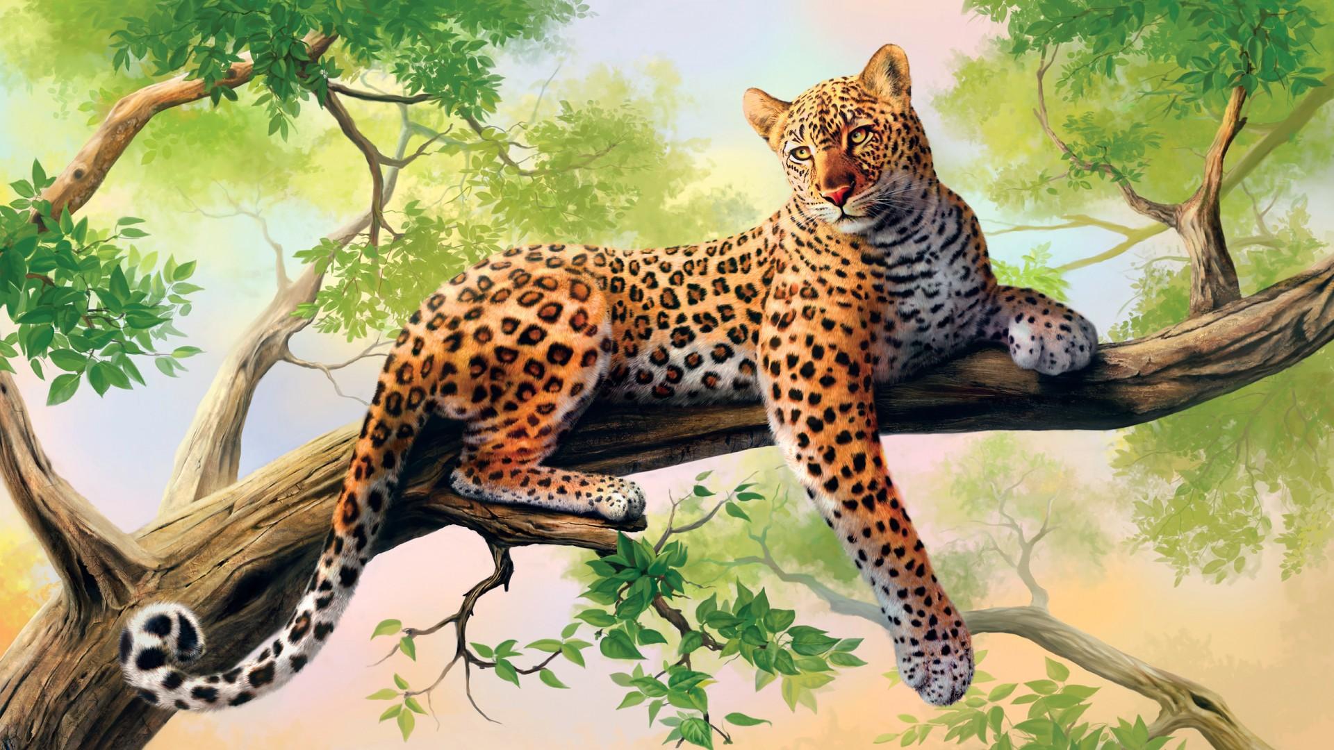 Latest Sports Cars 2014 Wallpaper Leopard Art Wallpapers Hd Wallpapers Id 13648