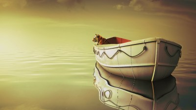Life Of Pi Boat Tiger Wallpapers | HD Wallpapers | ID #15443