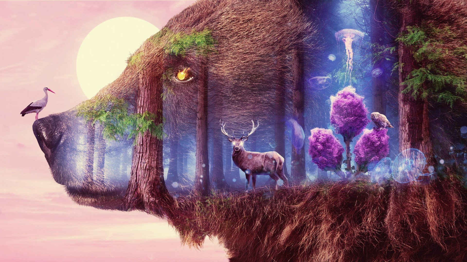 Cute Cartoon Wallpaper Download Mystical Wildlife Wallpapers Hd Wallpapers Id 22651
