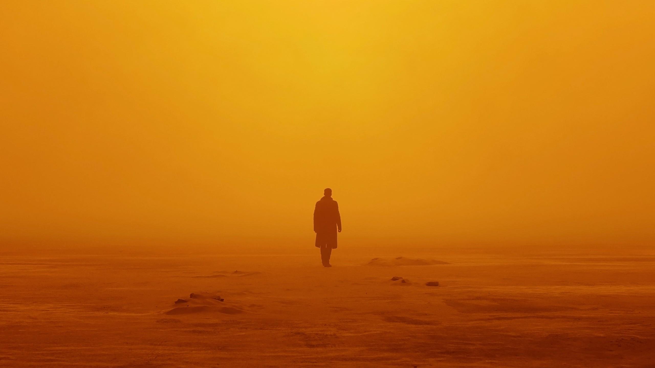 3d Jungle Wallpaper Officer K Blade Runner 2049 Wallpapers Hd Wallpapers