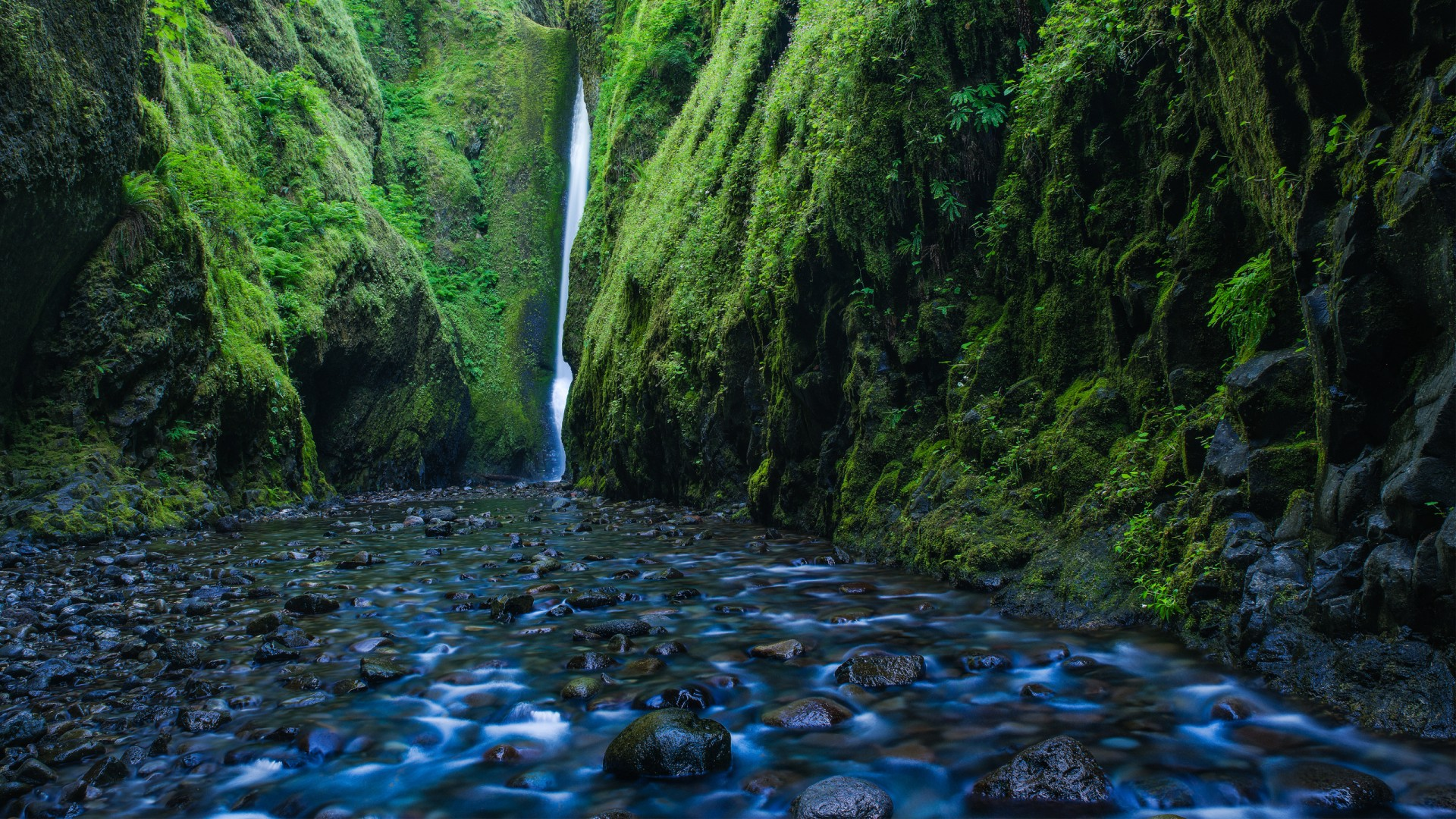 Anime Wallpaper Iphone 7 Plus Oneonta Gorge Waterfall Oregon Wallpapers Hd Wallpapers