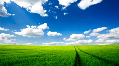 Pure Nature HD Wallpapers | HD Wallpapers | ID #8841