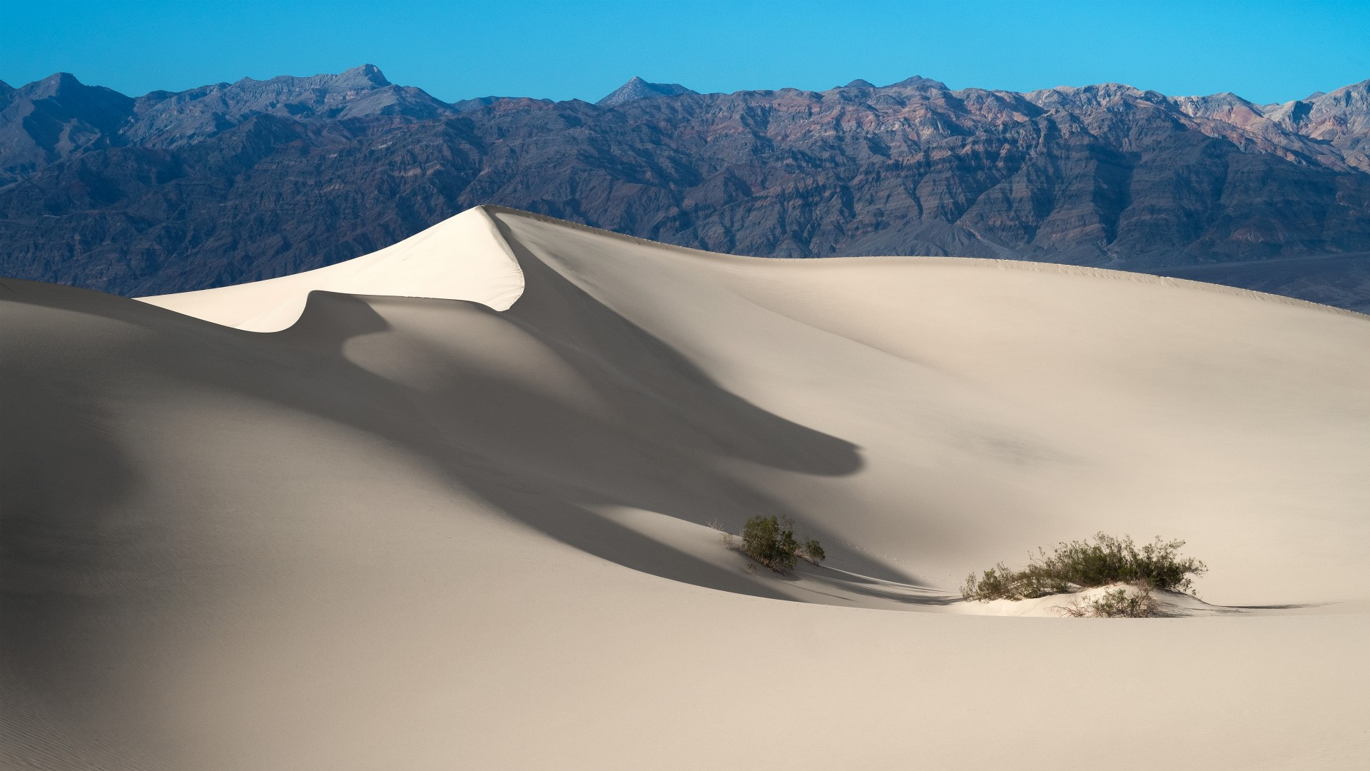 Cute Love Anime Wallpaper Sand Dunes Death Valley National Park Wallpapers Hd