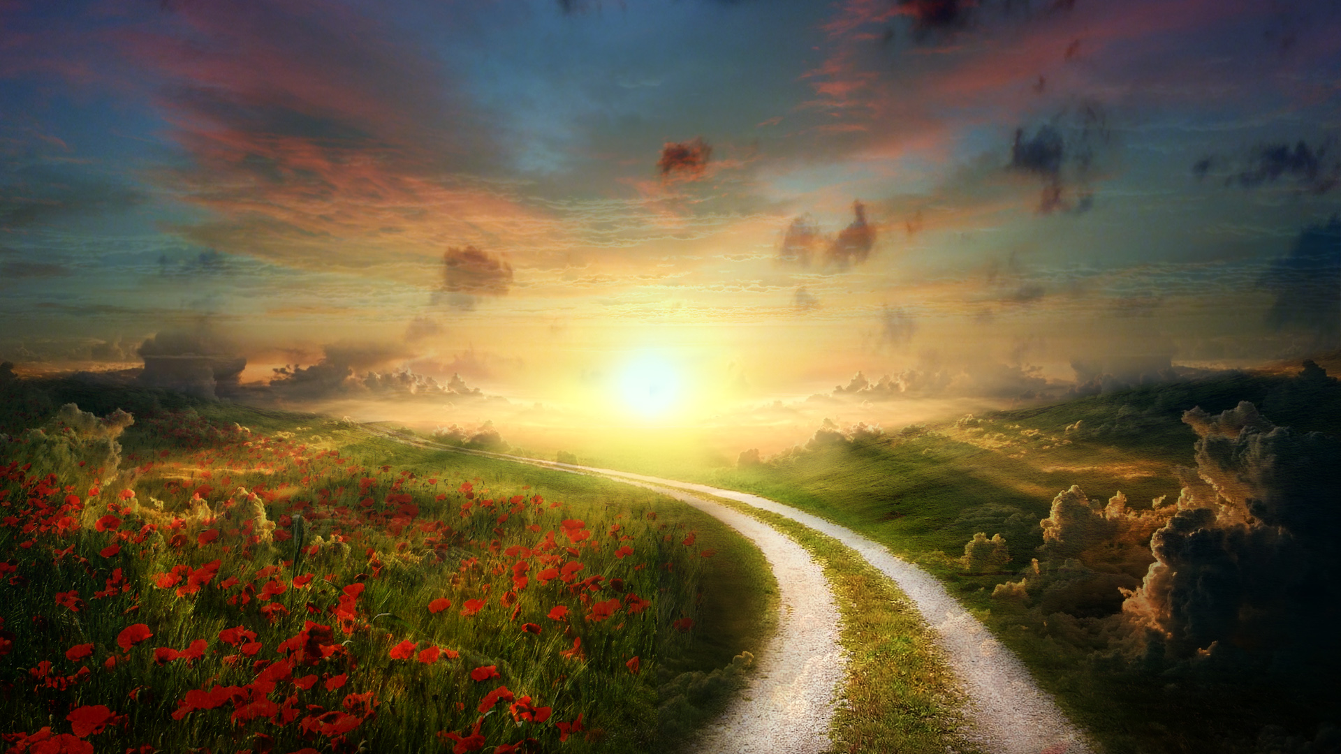 4k Fall Painting Wallpapers Sun Poppy Path Landscape Wallpapers Hd Wallpapers Id