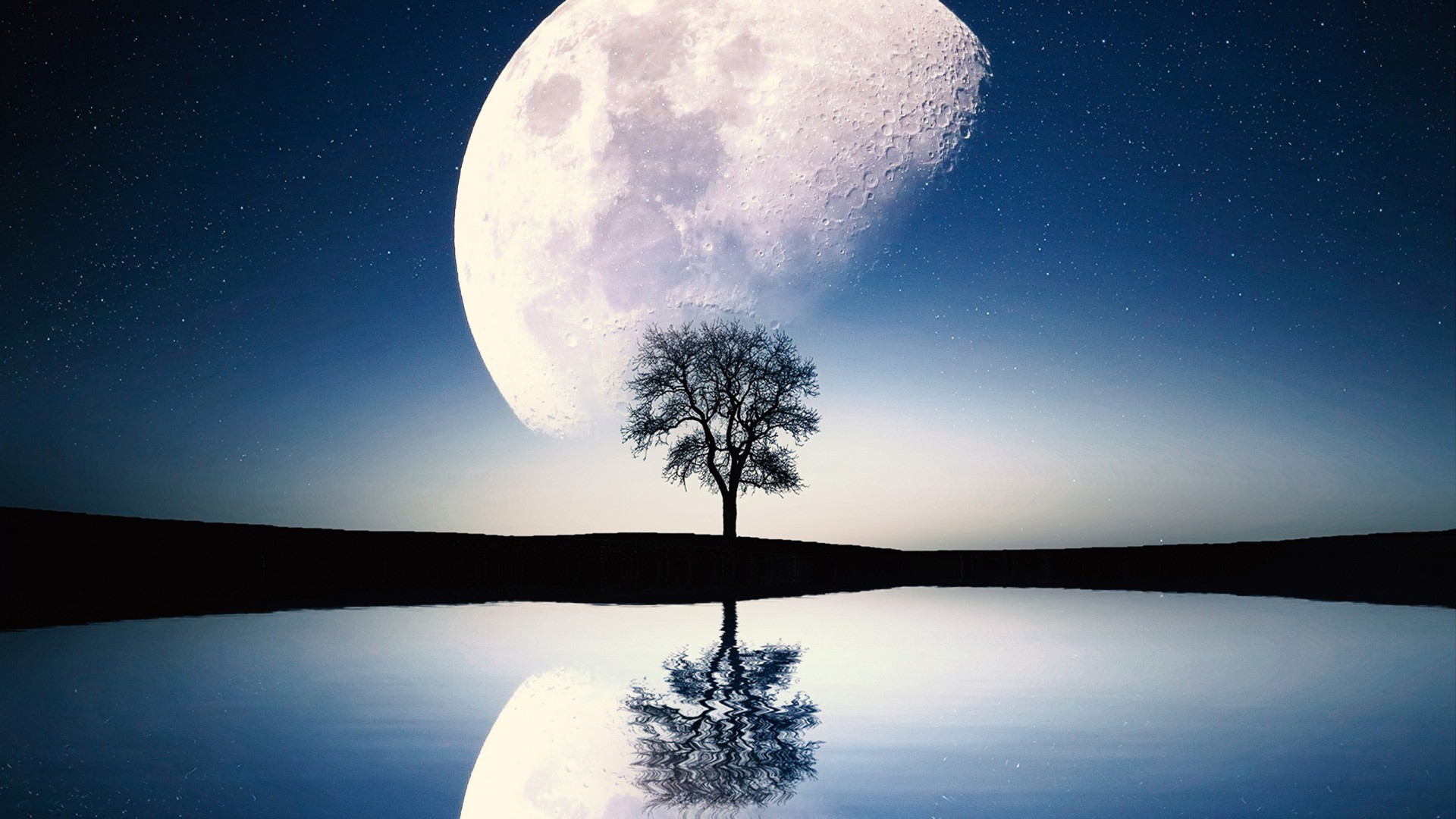 Cute Wallpapers On Computer Surreal Moon Scene Wallpapers Hd Wallpapers Id 27905