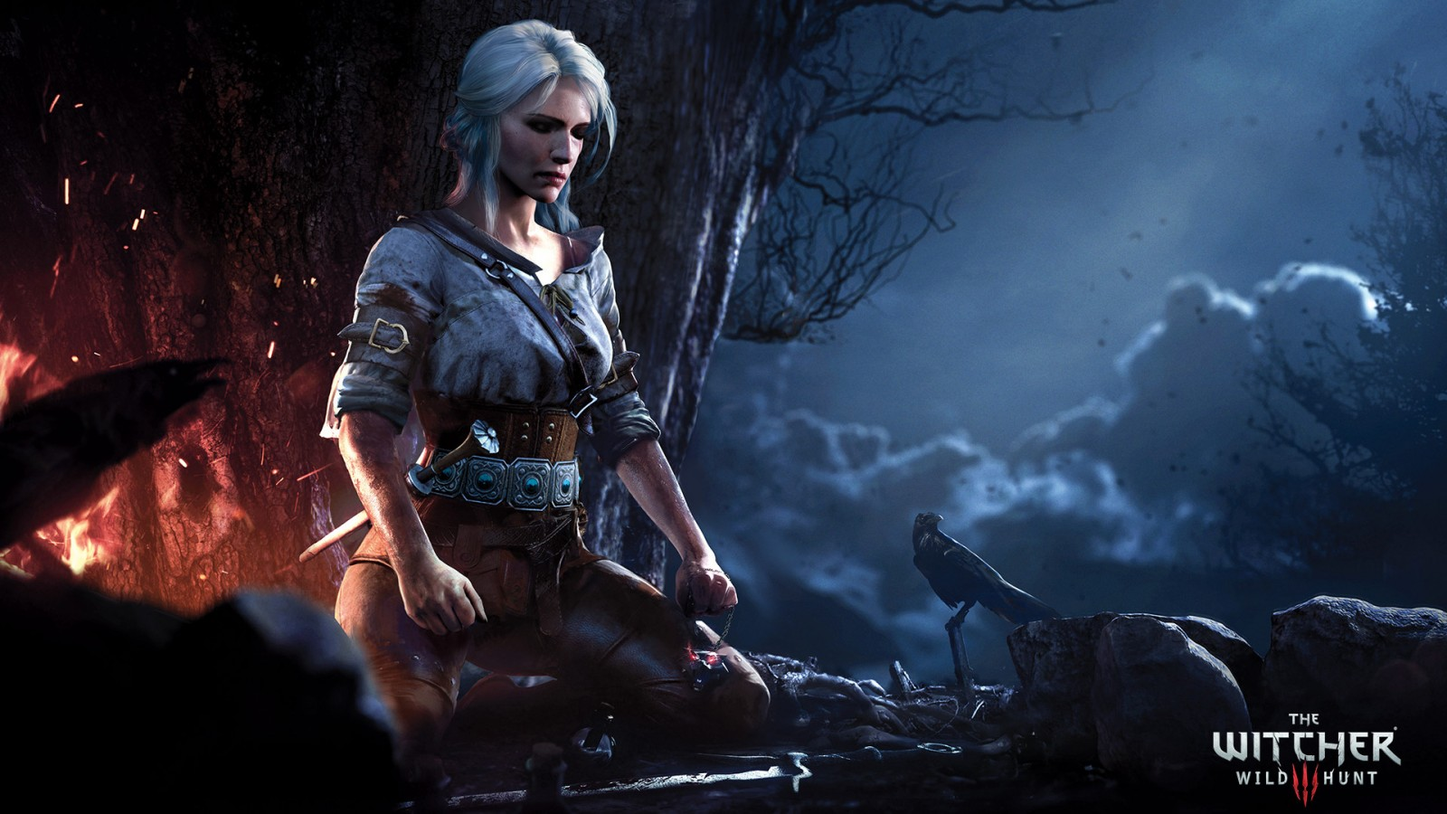 Good 3d Wallpapers For Desktop The Witcher 3 Wild Hunt Ciri Wallpapers Hd Wallpapers