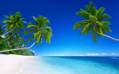 Tropical Beach Paradise 5K Wallpapers | HD Wallpapers | ID #18455