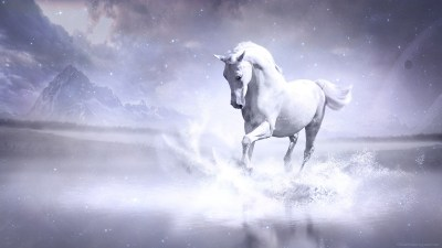 White Horse Wallpapers | HD Wallpapers | ID #13896