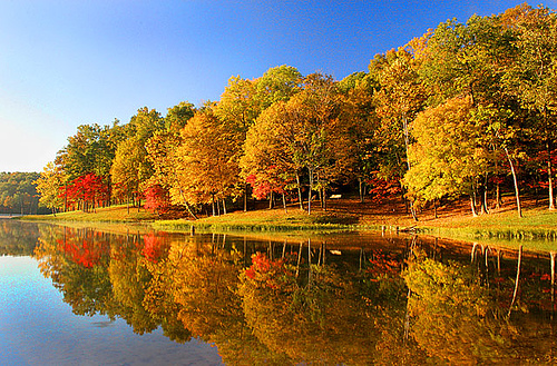 Windows Xp Fall Wallpaper Lake In Autumn Hd Wallpapers Pulse
