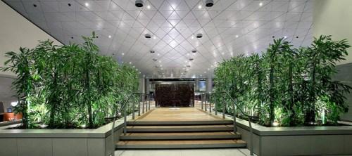 Qatar Hamad lounge 3