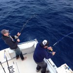Double Hookup Bluefin