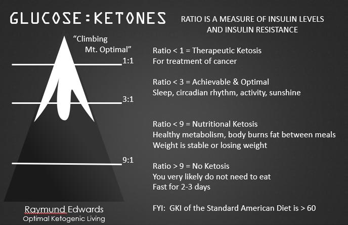 Tracking the Glucose Ketone Index - Heads Up Health