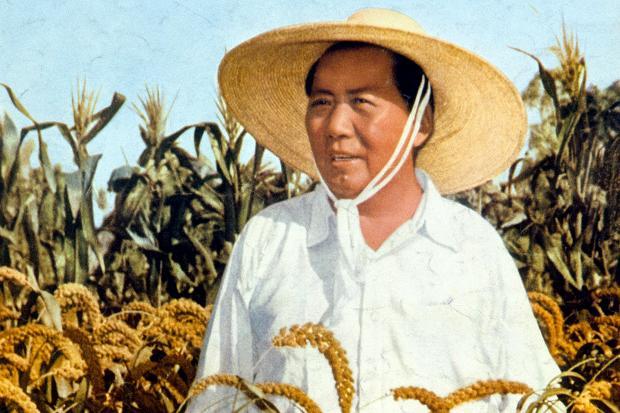 Zedong_90002977_178223c