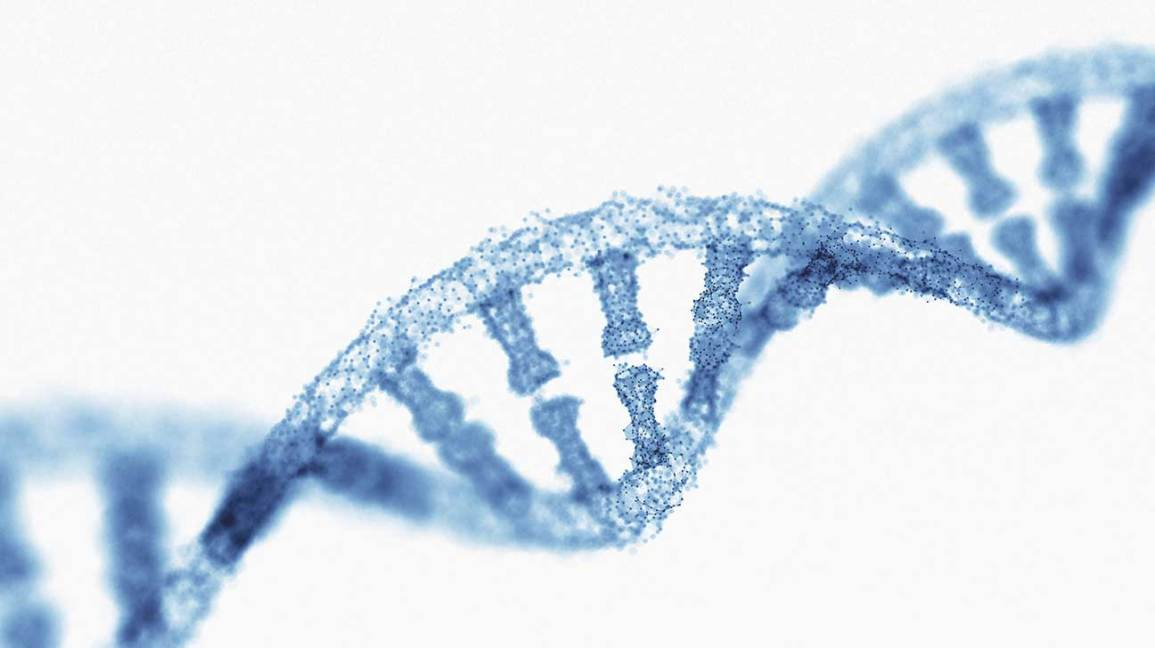 Can We Encode Medical Records Into Our DNA?