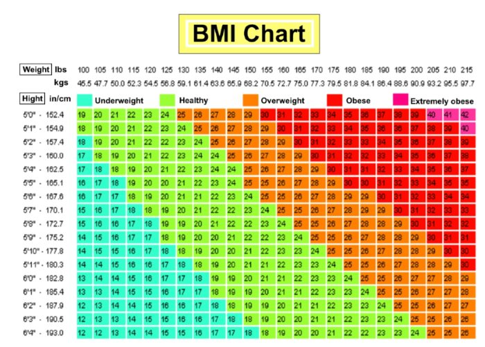 Are You Obese, Overweight? Use This BMI Calculator Chart to Find Out