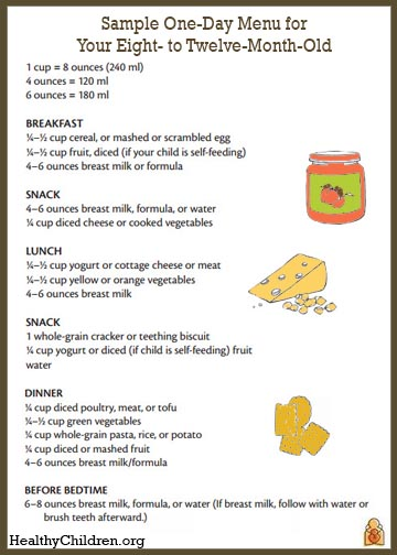 Sample Menu for an 8 to 12 Month Old - HealthyChildrenorg