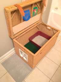 8 Creative Ways to Hide Your Cat's Litter Box | Healthy Paws