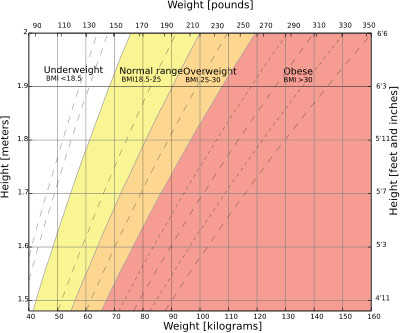 BMI Chart Calculator Body Mass Index Weight Height Chart Converter - height weight chart