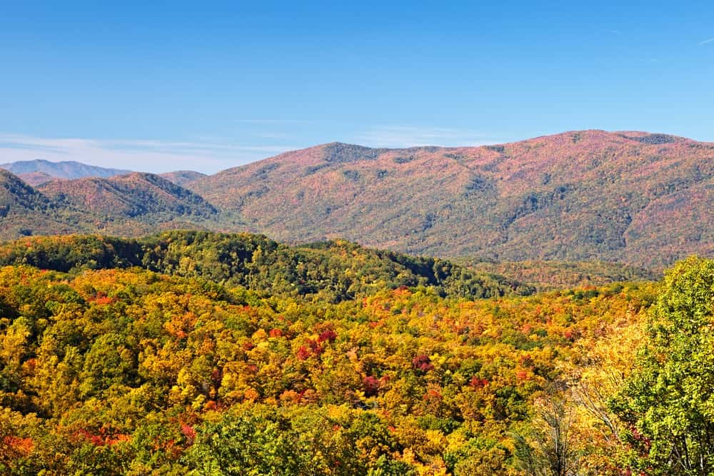 Fall In The Smokies Wallpaper The 4 Best Things To Do In The Smoky Mountains During The Fall