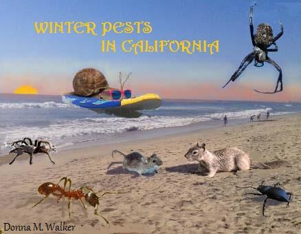 Pests in California