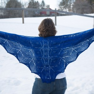 Hoo*bert, a triangular shawl with tumbling police boxes.