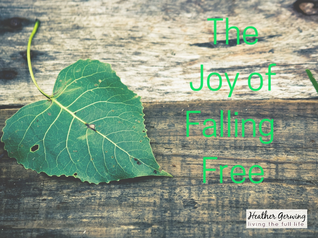 The Joy of Falling Free