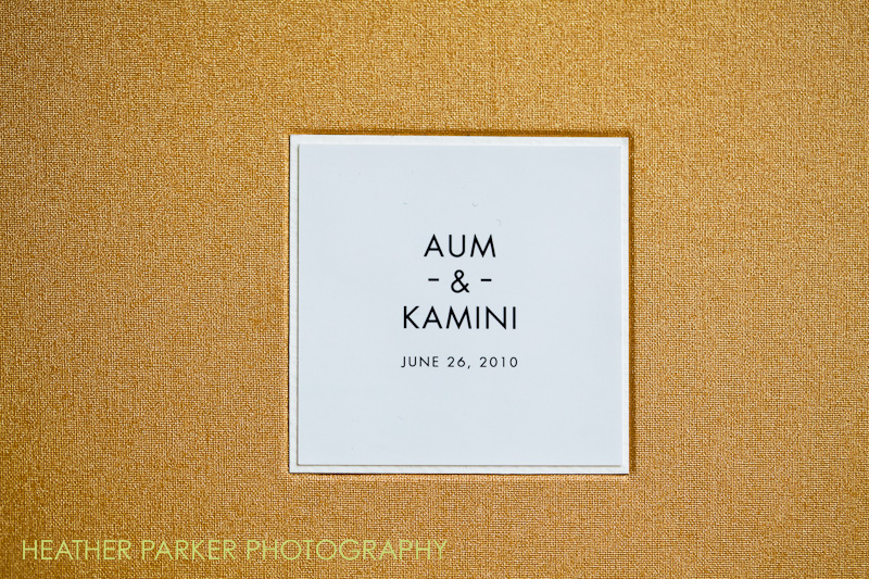 RedTree Album, luxe leather, storm Photo by Sunglow Photography - cover note