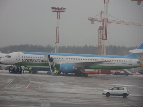 DME Uzbekistan Airlines
