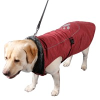 Winter Coats For Extra Large Dogs - Tradingbasis