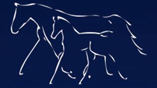 http://www.devon-equine-vets.com