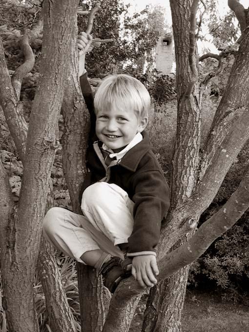 Arkiv billede - Lille Mads i Tante Helles æbletræ.