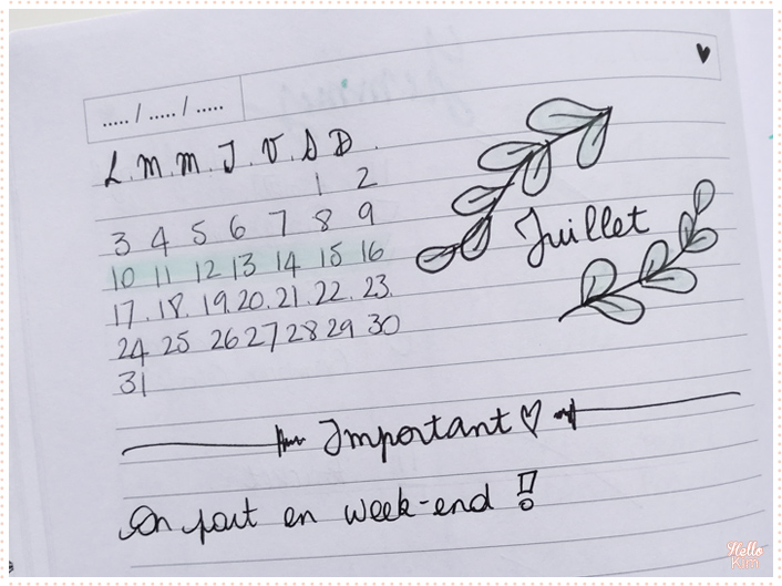 Bullet-journal_page-hebdo2_HelloKim