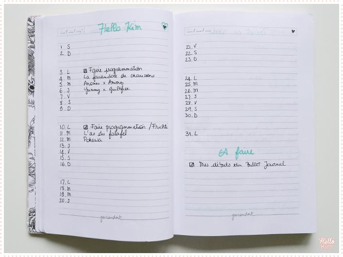 Bullet-journal_suivi-blog_HelloKim