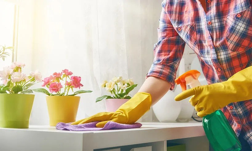 Spring cleaning \u2013 top tips you need to know - photo of spring