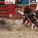 Contest! 69th Annual Cloverdale Rodeo and 127th Country Fair returns May 15 – 18, 2015