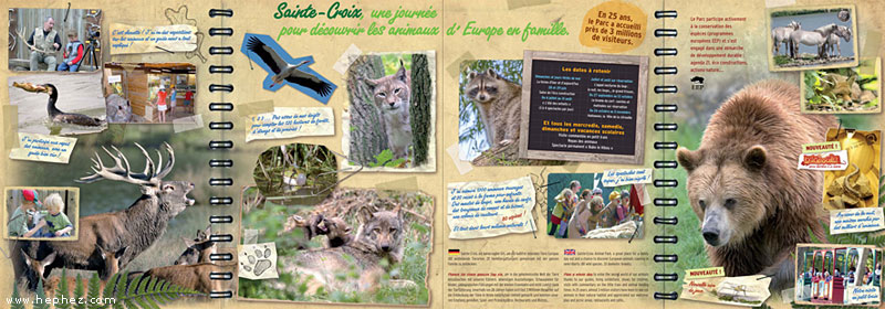 brochure design zoo - Google Search ART217 Brochure Panteleev - sample hotel brochure