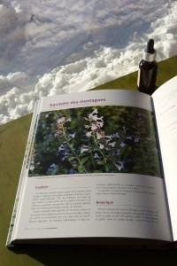 Fleurentin's book aroma