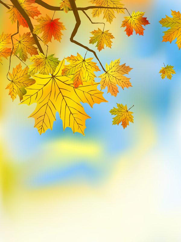 Free Fall Christian Desktop Wallpaper Ключевые слова красиво Кленовый лист фон Вены листья