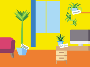 le piante per lavorare meglio anche da casa: aloe vera, dracena e falangio