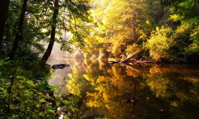 abrams-creek-j-mckee-alltrails-heysmokies