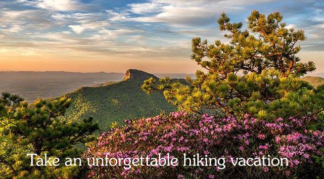 Take a hike with The Wildland Trekking Company Smoky Mountains