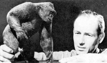 Mighty Joe Young and Harryhausen